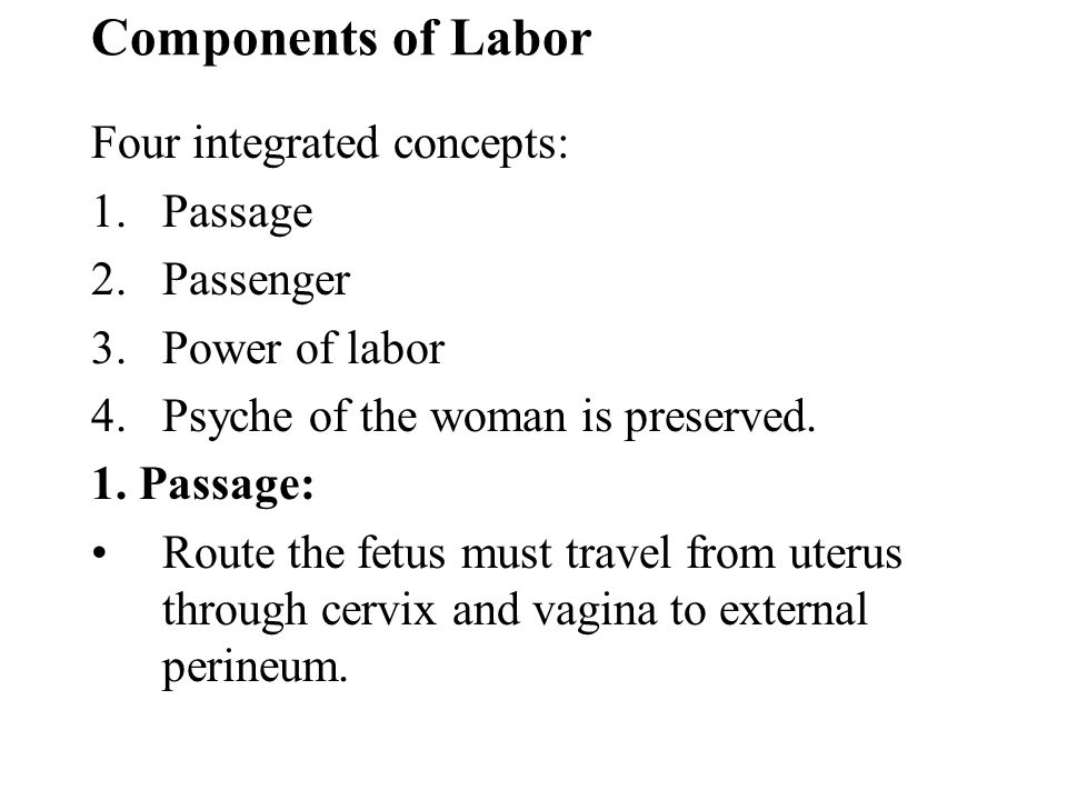 Components of Labor Four integrated concepts: Passage Passenger