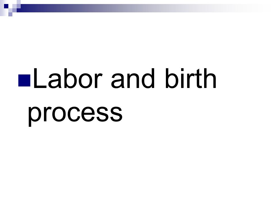 Labor and birth process