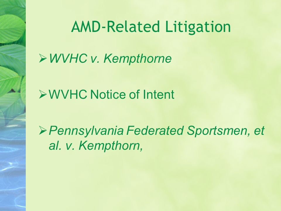 AMD-Related Litigation