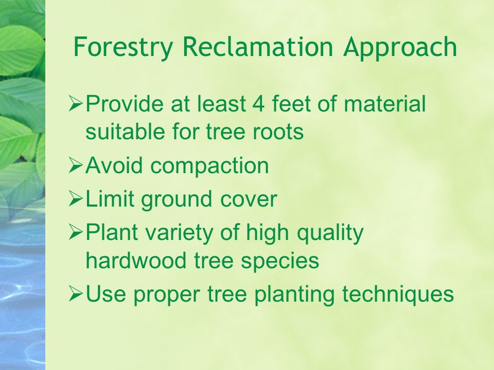 Forestry Reclamation Approach