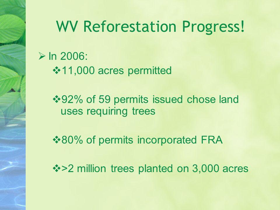 WV Reforestation Progress!