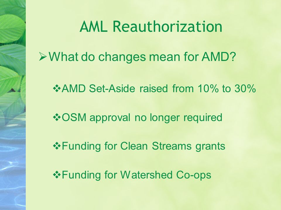 AML Reauthorization What do changes mean for AMD