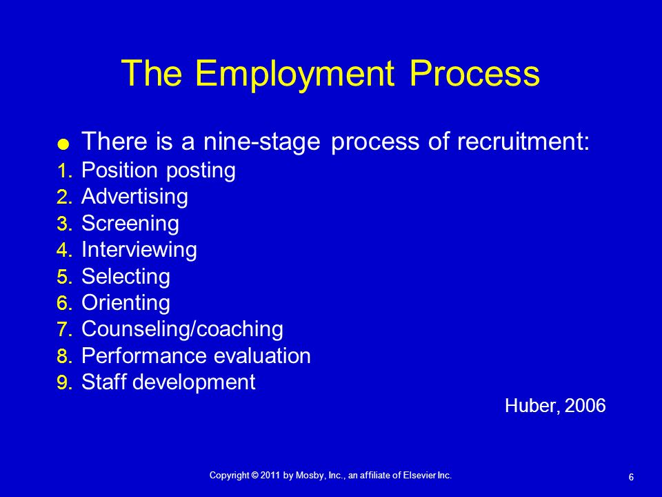 The Employment Process