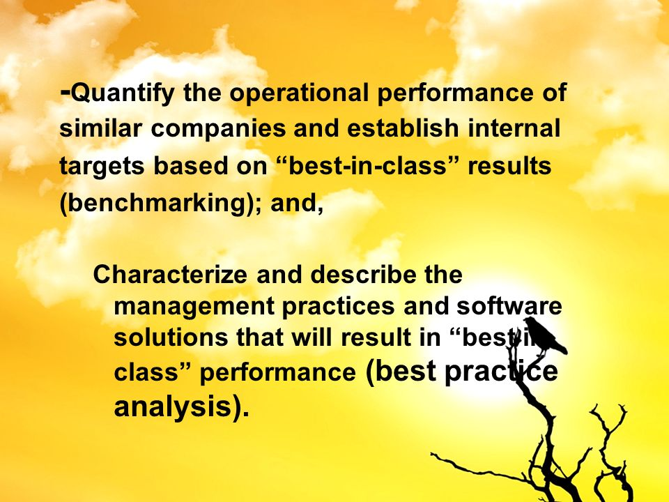 -Quantify the operational performance of similar companies and establish internal targets based on best-in-class results (benchmarking); and,
