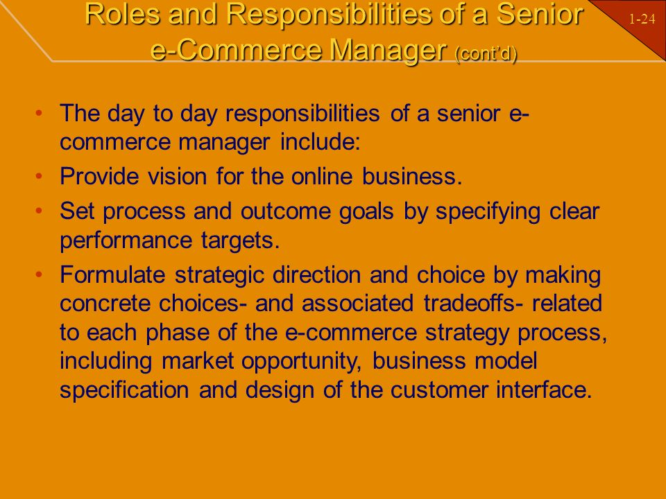 Roles and Responsibilities of a Senior e-Commerce Manager (cont'd)