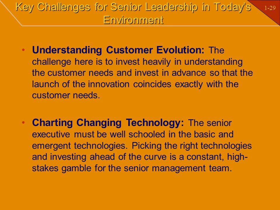 Key Challenges for Senior Leadership in Today's Environment