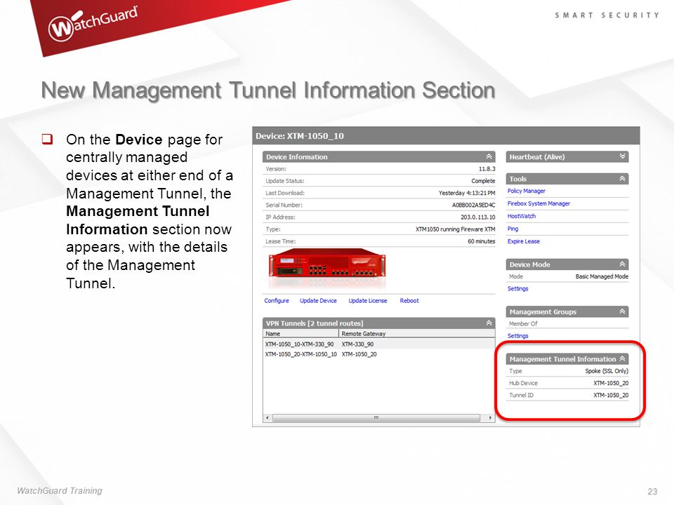 New Management Tunnel Information Section