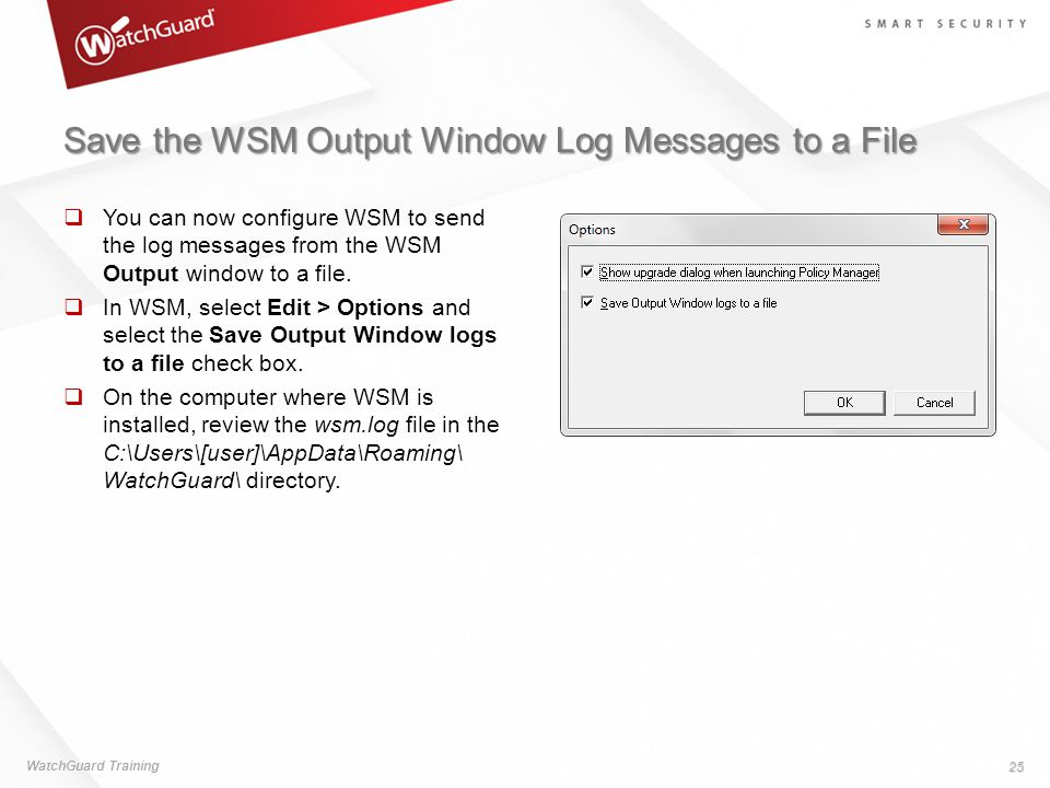 Save the WSM Output Window Log Messages to a File