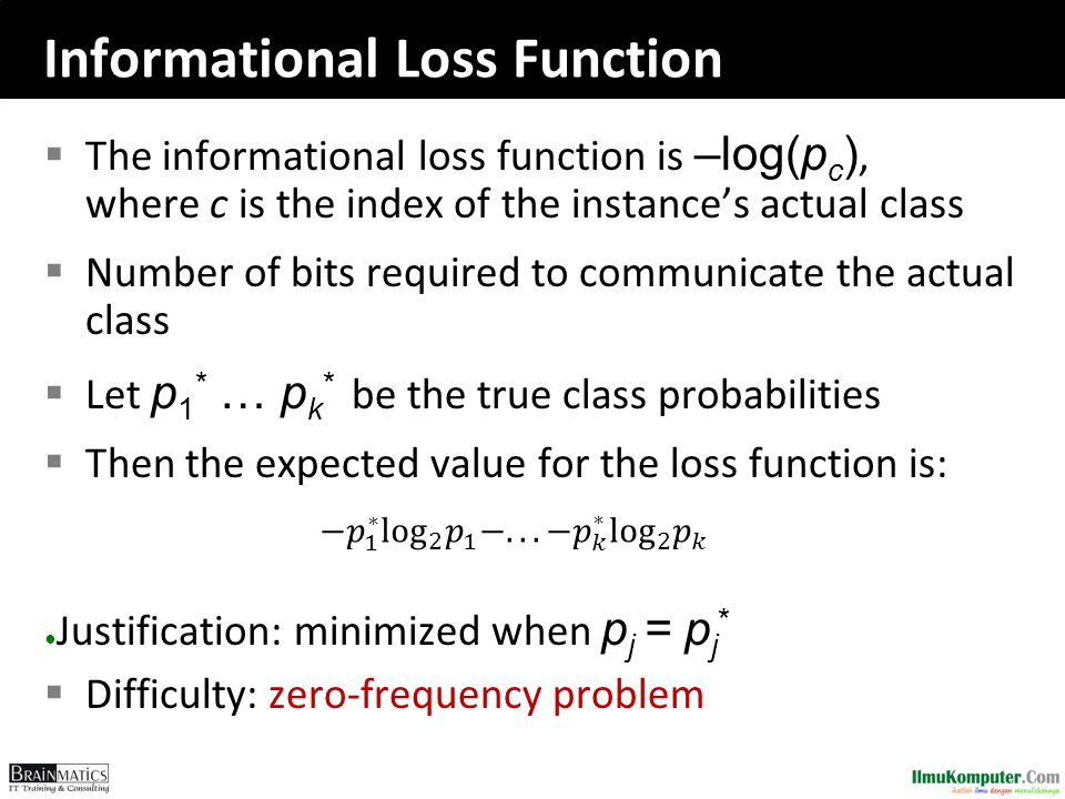 Informational Loss Function
