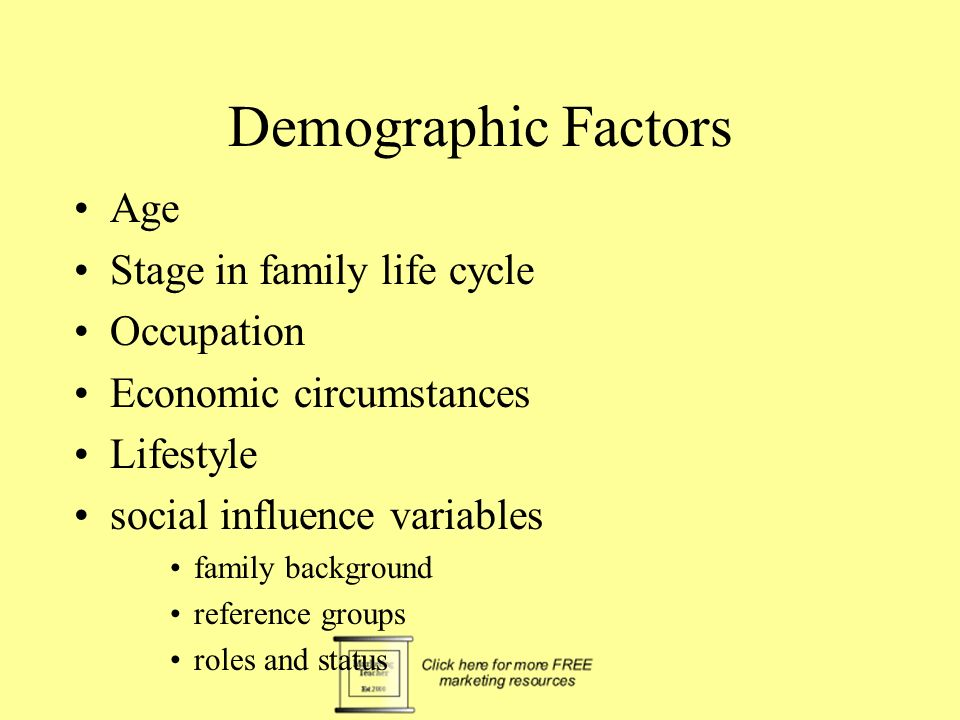 Demographic Factors Age Stage in family life cycle Occupation