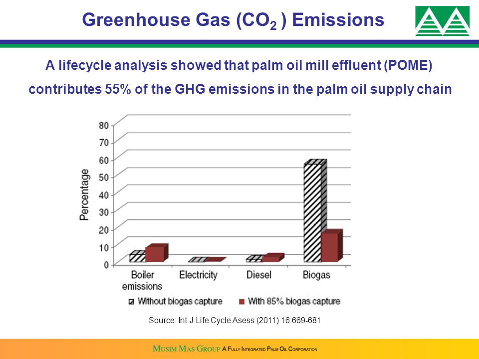 Greenhouse Gas (CO2 ) Emissions