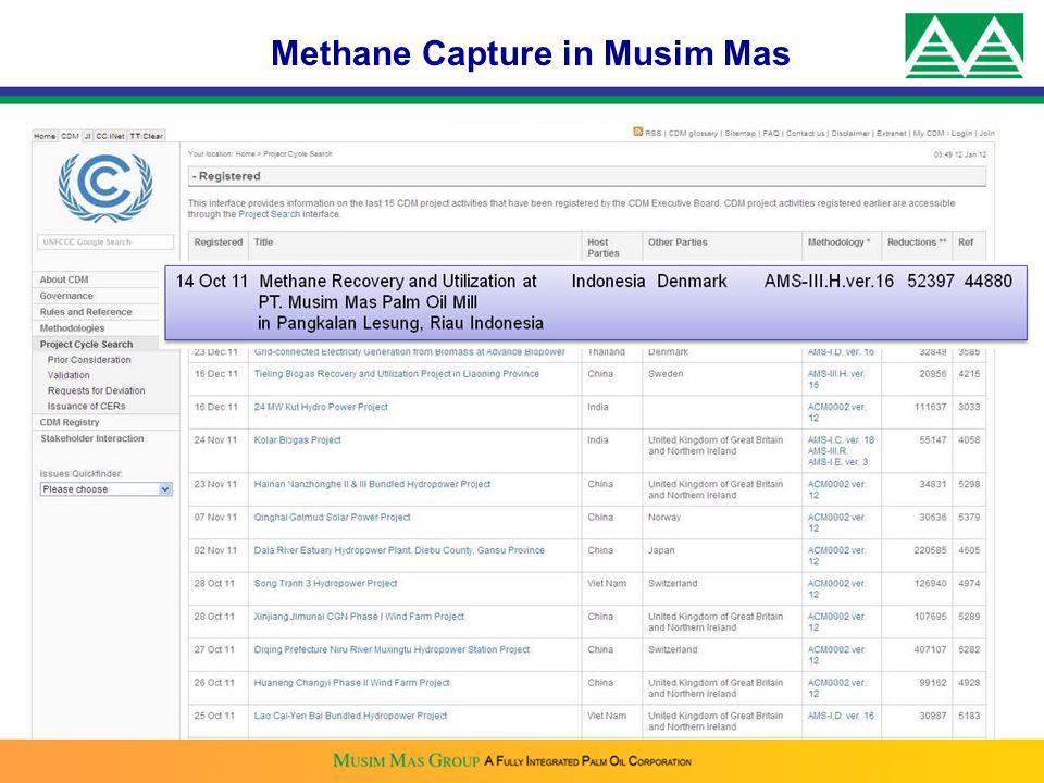 Methane Capture in Musim Mas