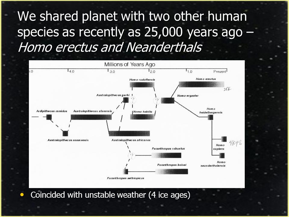 We shared planet with two other human species as recently as 25,000 years ago – Homo erectus and Neanderthals