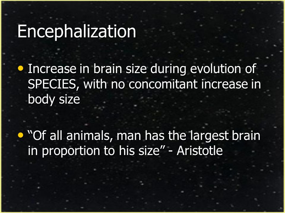 Encephalization Increase in brain size during evolution of SPECIES, with no concomitant increase in body size.