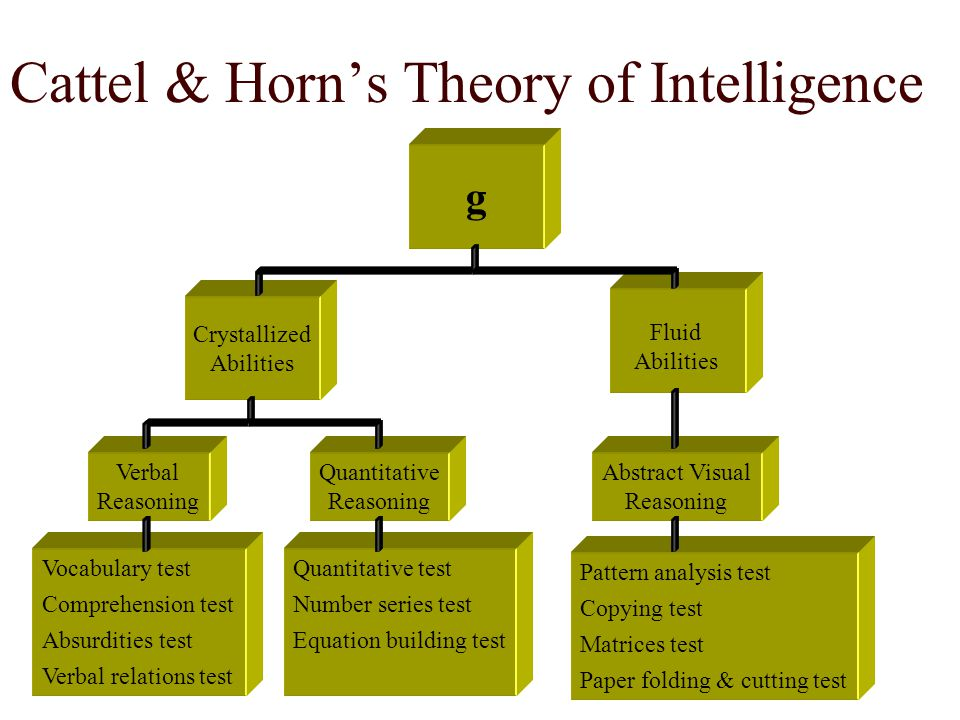 Cattel & Horn's Theory of Intelligence