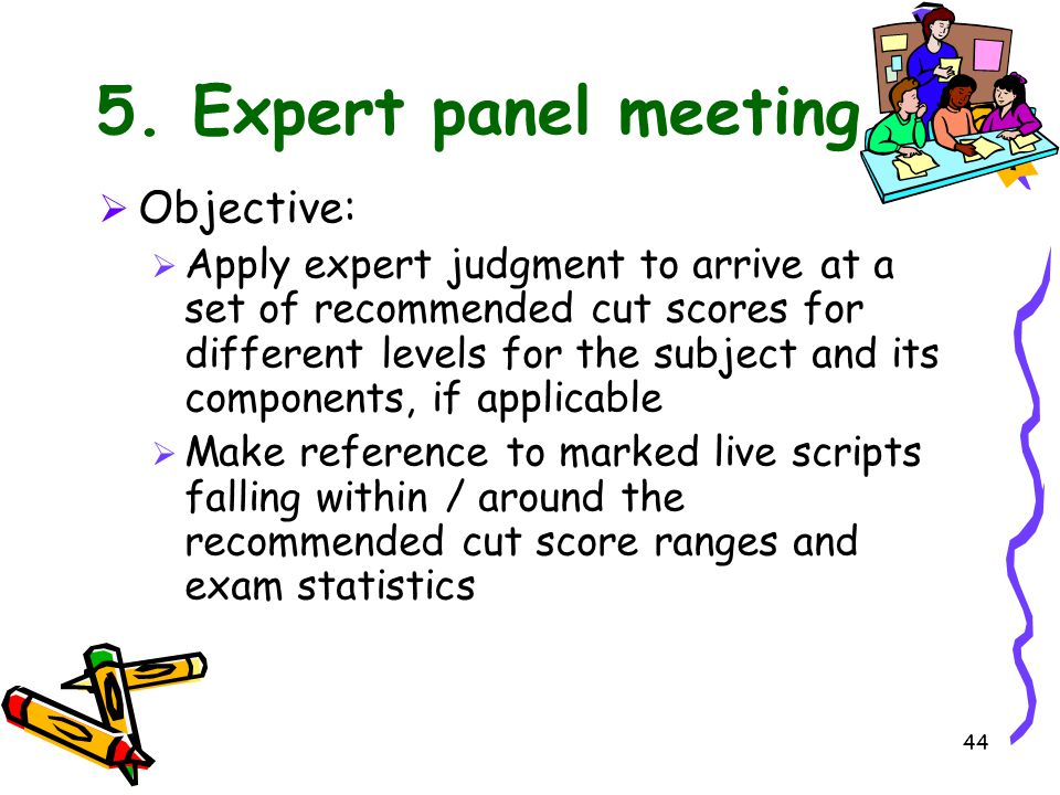 5. Expert panel meeting Objective: