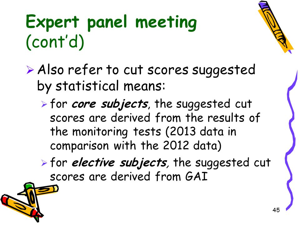 Expert panel meeting (cont'd)