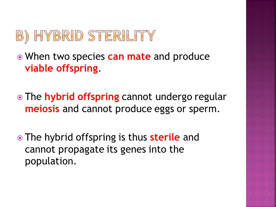 b) Hybrid sterility When two species can mate and produce viable offspring.