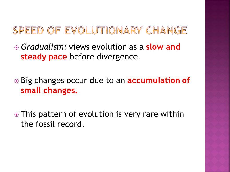 Speed of evolutionary change
