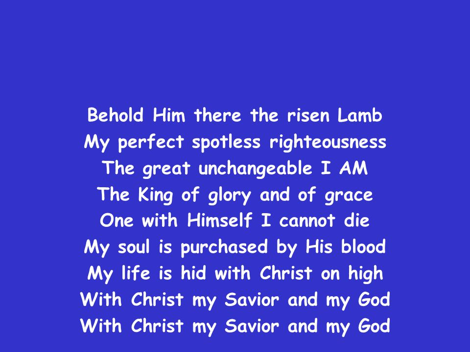 Behold Him there the risen Lamb My perfect spotless righteousness