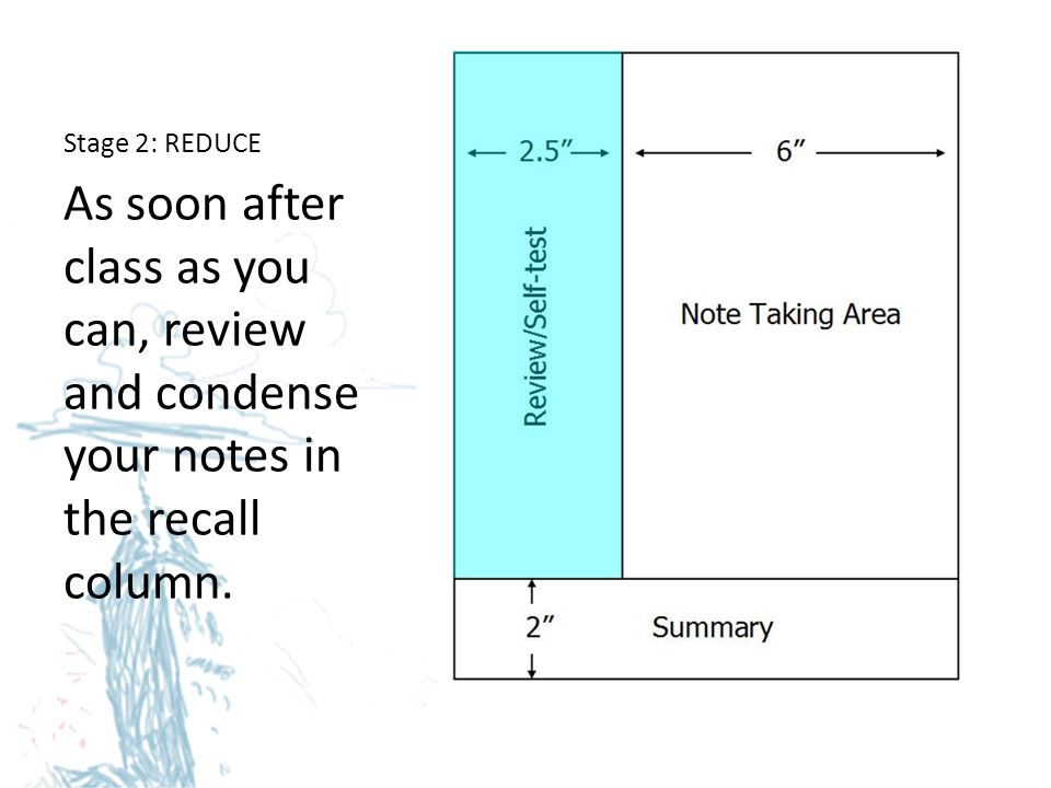 Stage 2: REDUCE As soon after class as you can, review and condense your notes in the recall column.