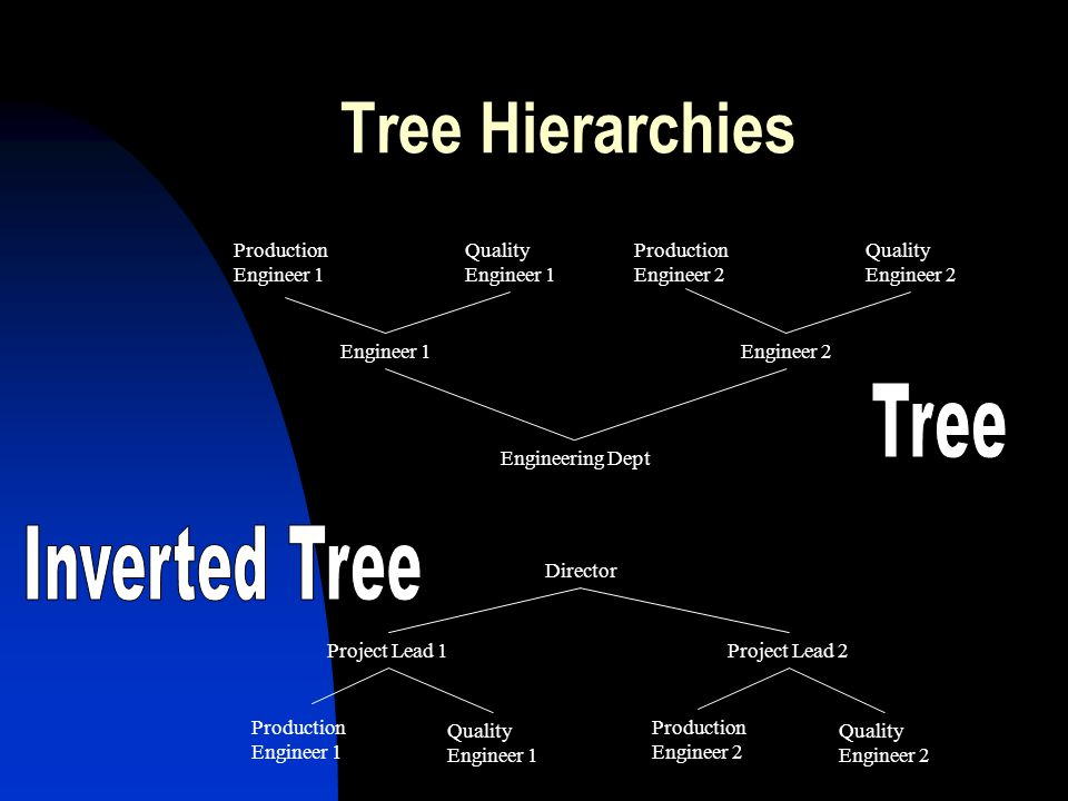 Tree Hierarchies Tree Inverted Tree Production Engineer 1 Quality