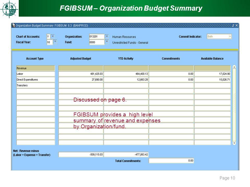 FGIBSUM – Organization Budget Summary