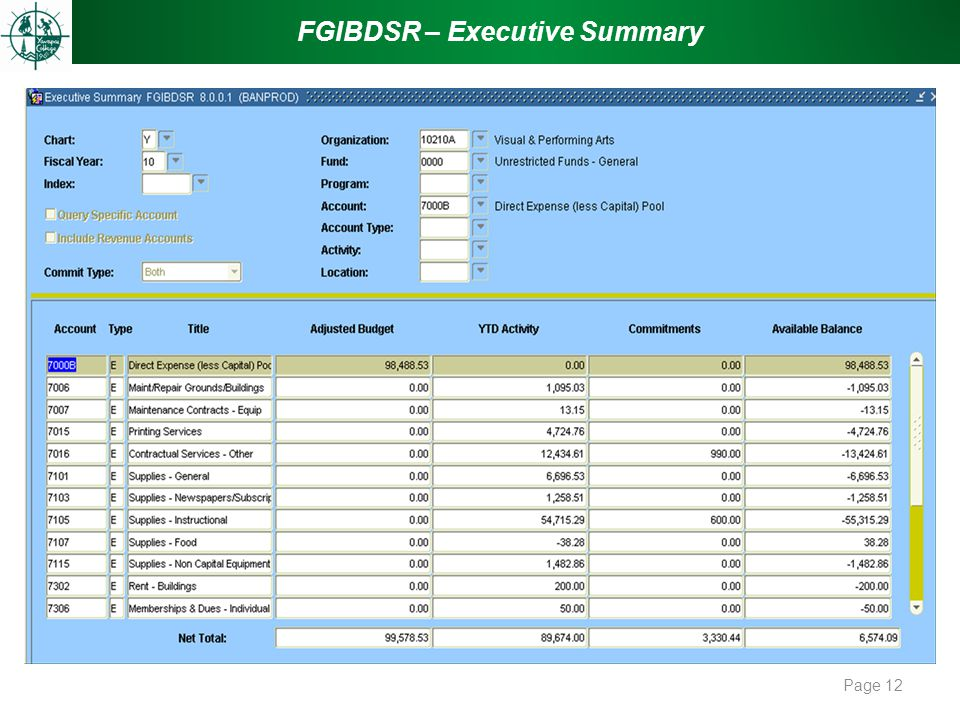 FGIBDSR – Executive Summary