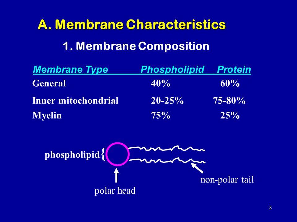 A. Membrane Characteristics