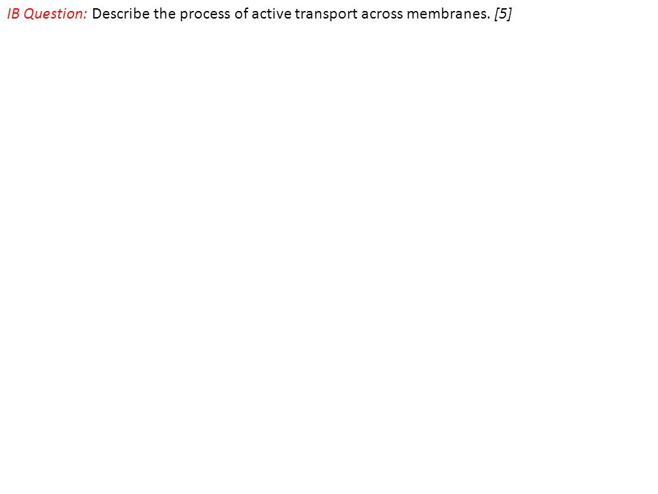 IB Question: Describe the process of active transport across membranes