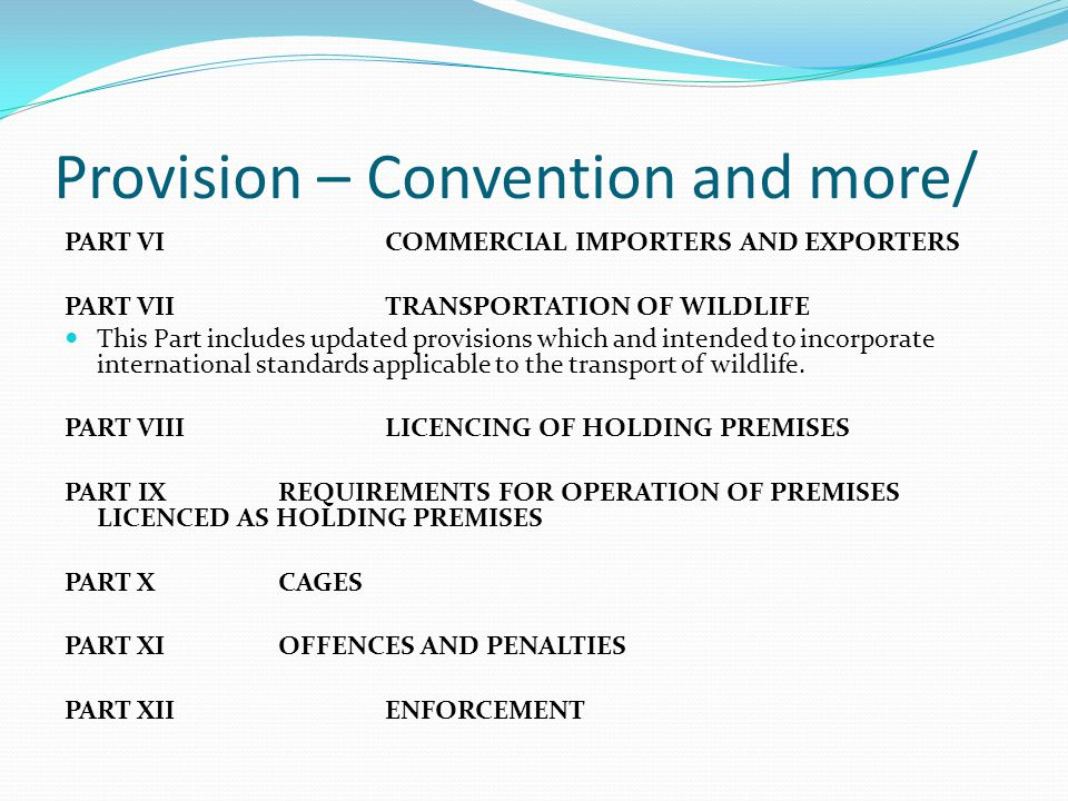 Provision – Convention and more/