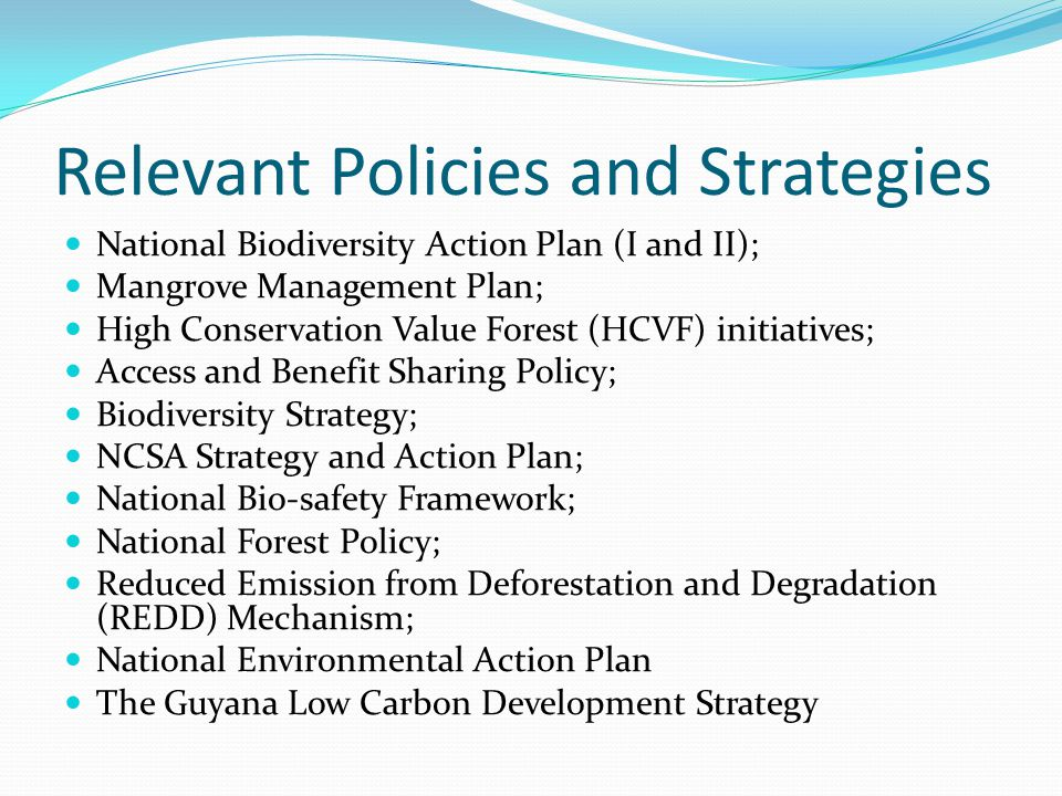 Relevant Policies and Strategies