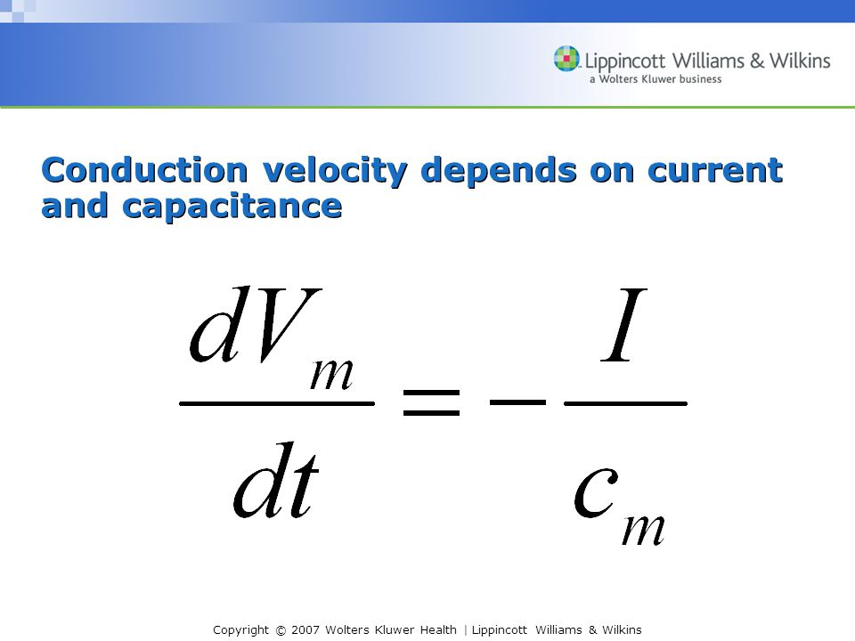 Conduction velocity depends on current and capacitance