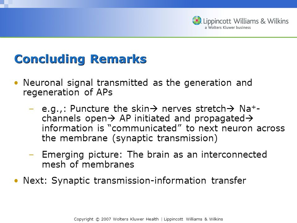 Concluding Remarks Neuronal signal transmitted as the generation and regeneration of APs.