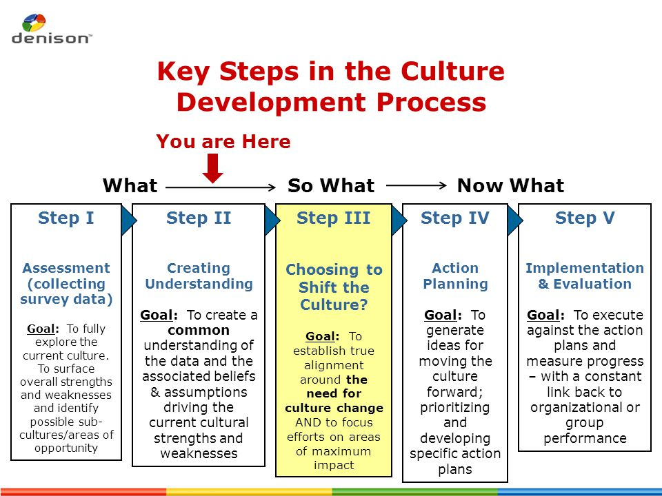 Key Steps in the Culture Development Process