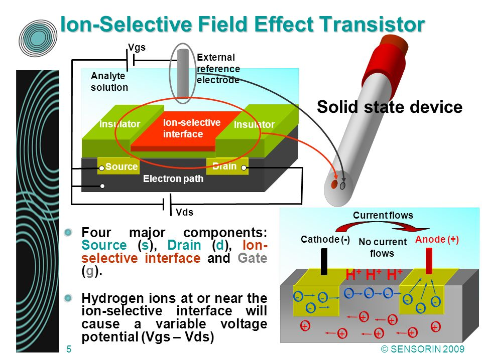 Ion-Selective Field Effect Transistor