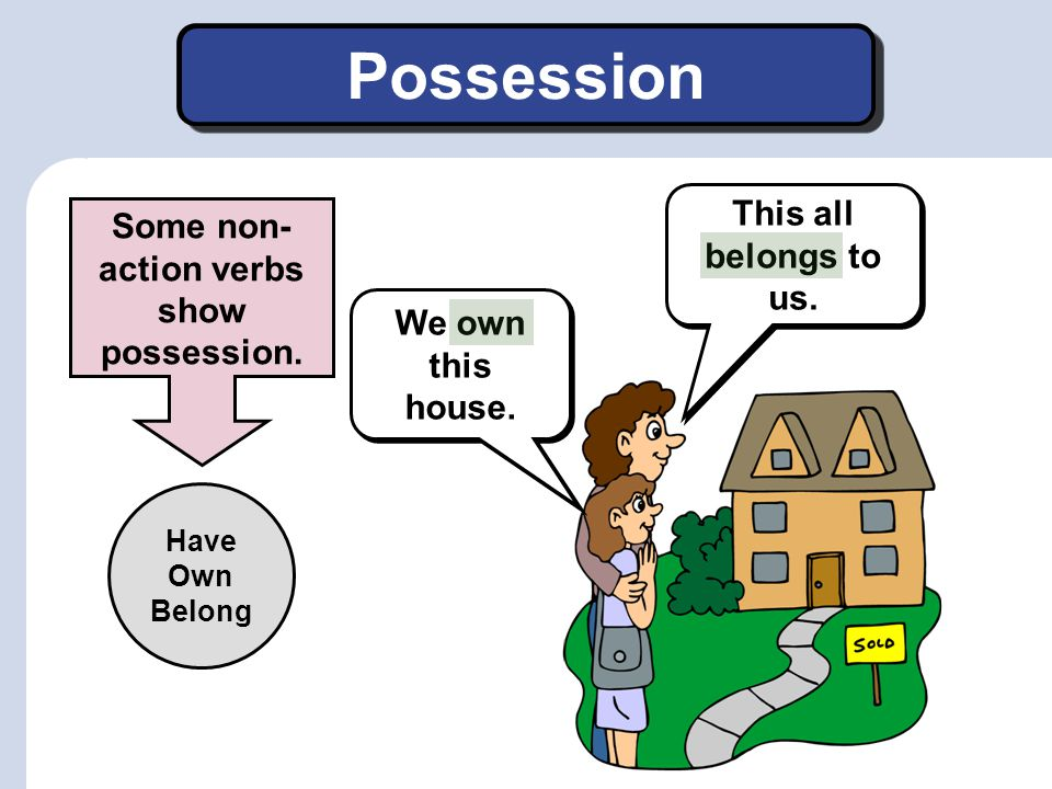 Some non-action verbs show possession.