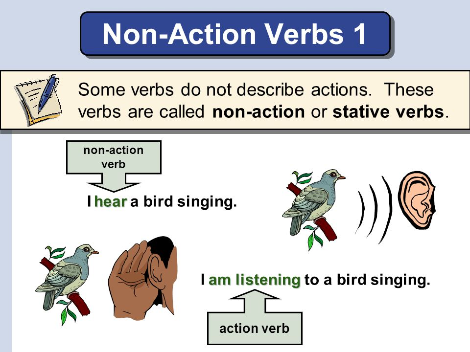 Non-Action Verbs 1 Some verbs do not describe actions. These verbs are called non-action or stative verbs.