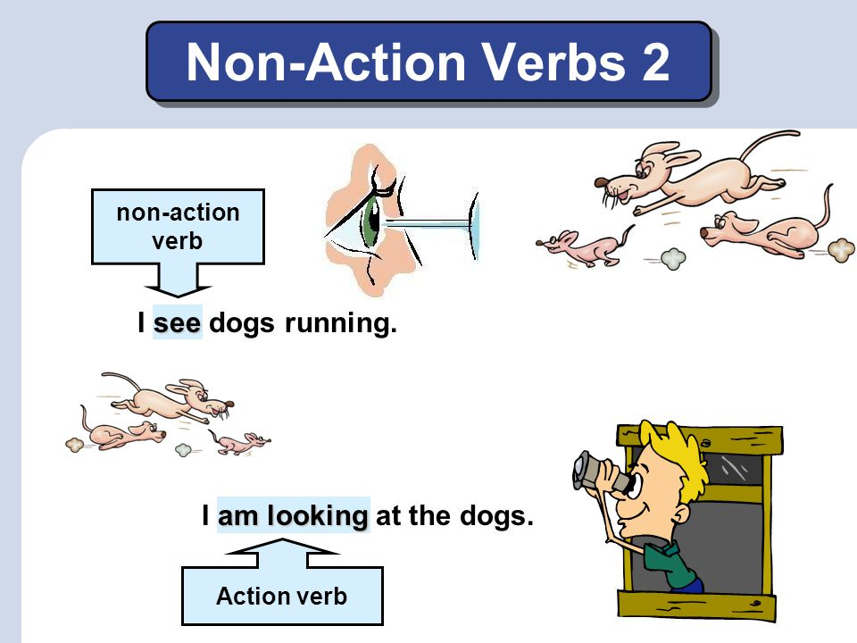 Non-Action Verbs 2 I see dogs running. I am looking at the dogs.