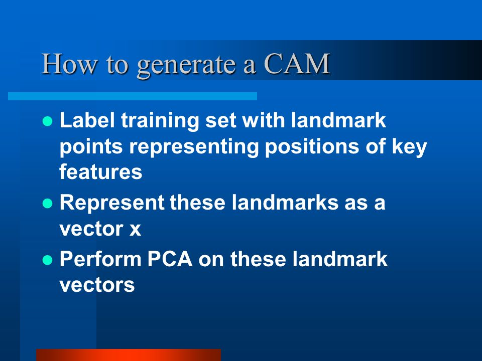 How to generate a CAM Label training set with landmark points representing positions of key features.