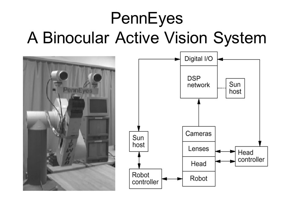 PennEyes A Binocular Active Vision System