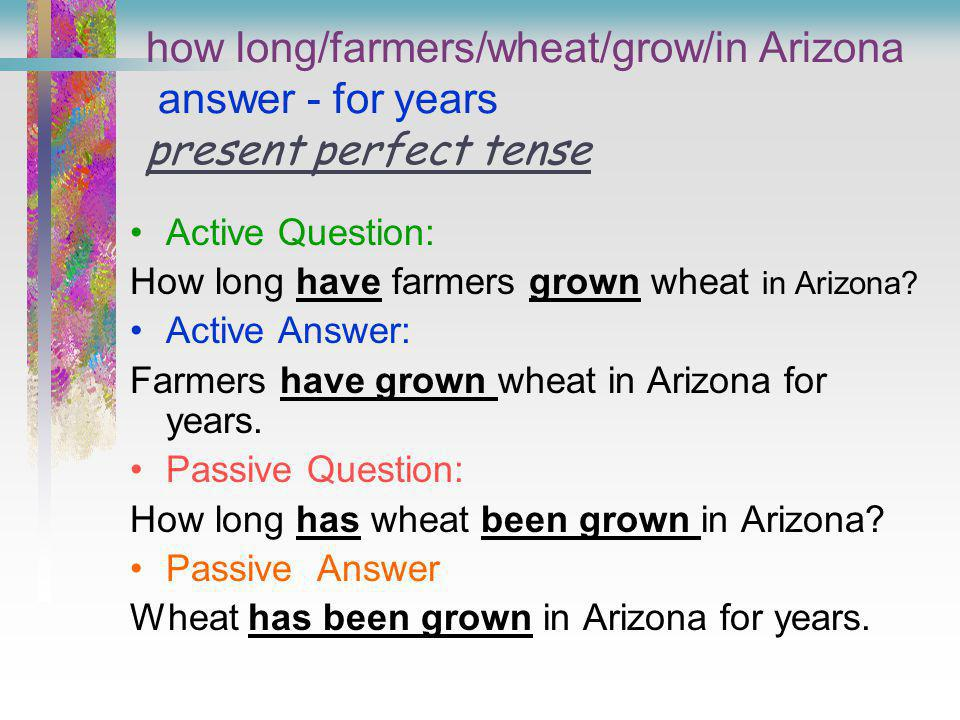 how long/farmers/wheat/grow/in Arizona answer - for years present perfect tense