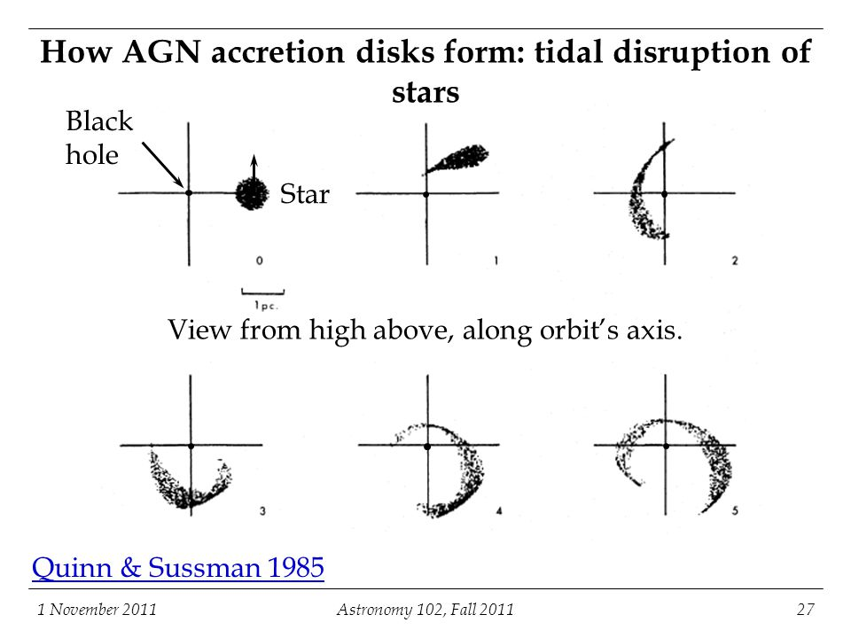 How AGN accretion disks form: tidal disruption of stars