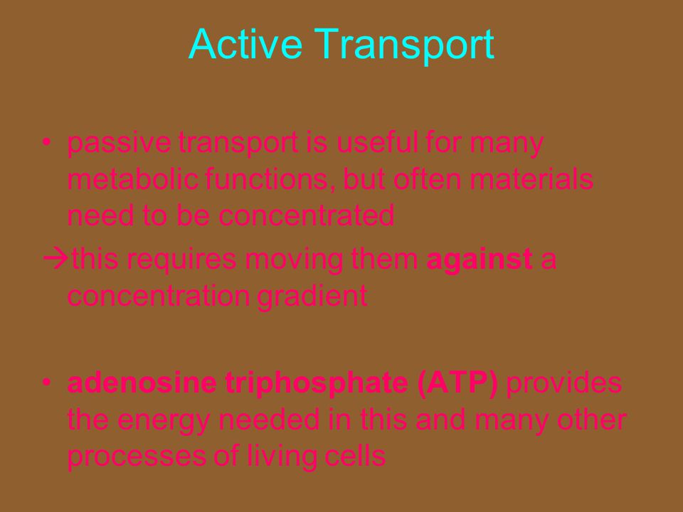Active Transport passive transport is useful for many metabolic functions, but often materials need to be concentrated.