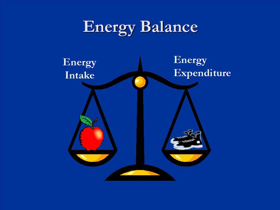 Energy Balance Energy Expenditure Energy Intake
