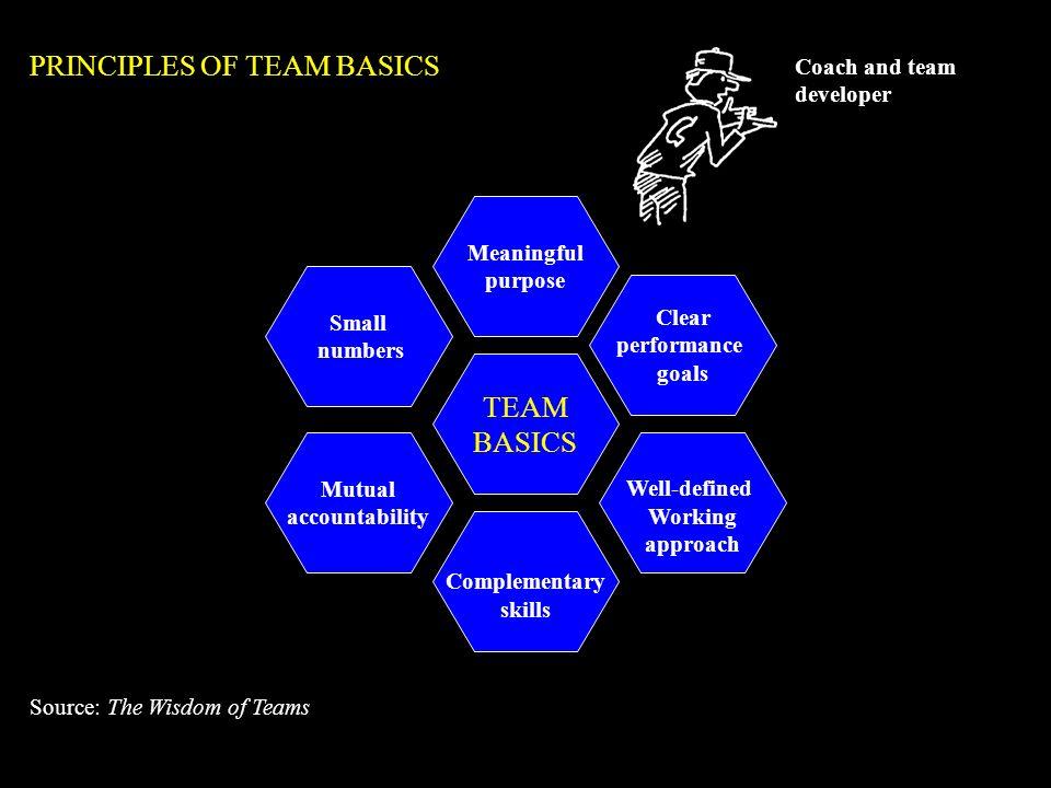PRINCIPLES OF TEAM BASICS