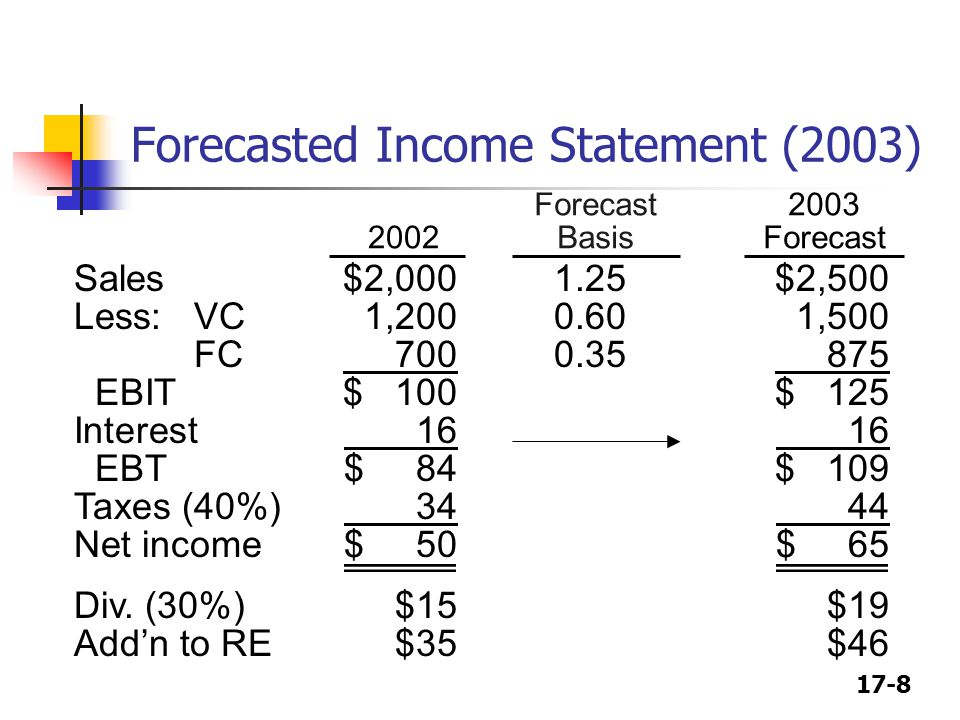 Forecasted Income Statement (2003)
