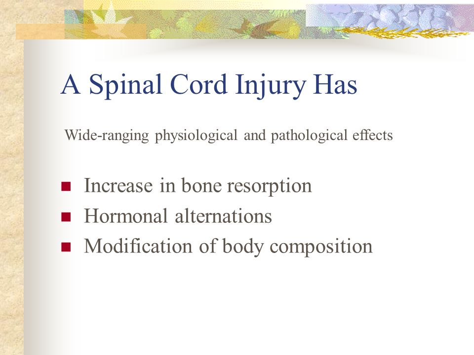 A Spinal Cord Injury Has