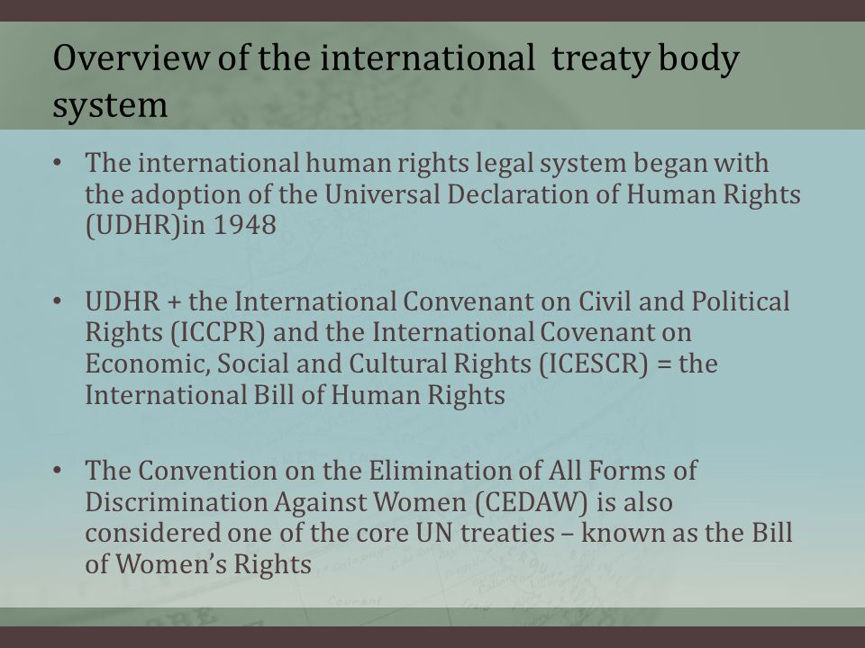 Overview of the international treaty body system