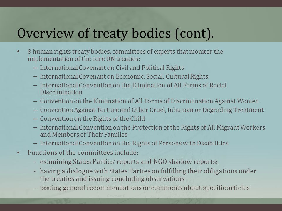 Overview of treaty bodies (cont).